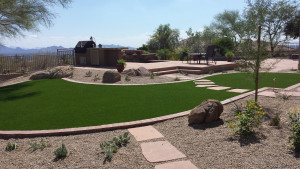 Your Desert Yard Landscape
