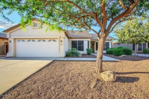 Best Active Adult Community Homes for sale in Chandler AZ